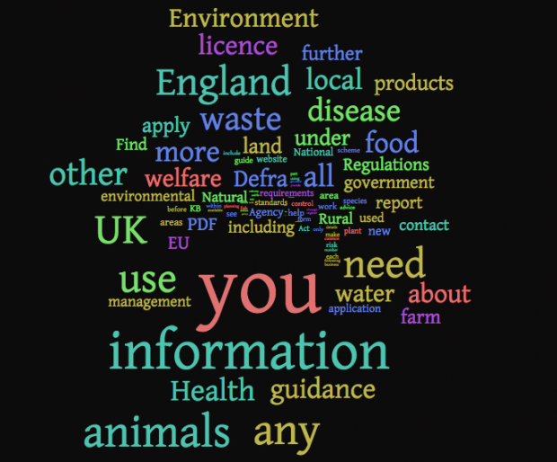 Wordcloud of GDS terms used in Defra