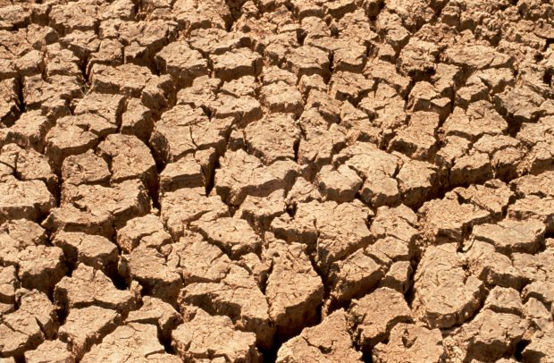 The effect of drought on soil