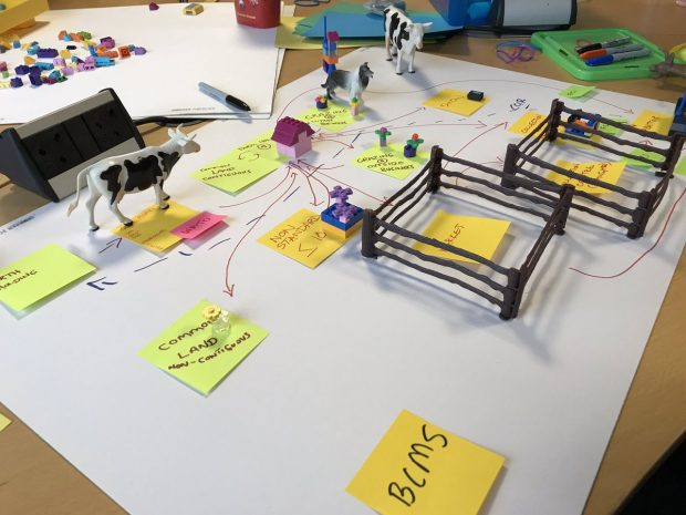 approaching service design using a range of prototyping tools, including miniature farm models