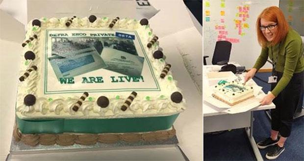 Cake and Rachel Nixon